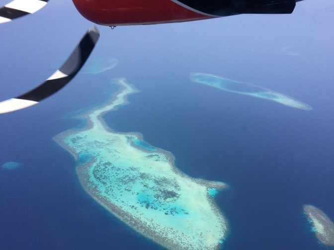 Maldives, Mirihi, diving, beach, snorkeling, flying over the Maldives, sharks, eagle rays
