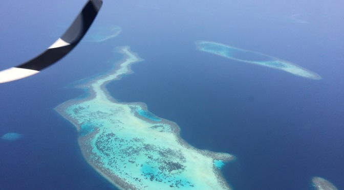 Maldives, Mirihi, diving, beach, snorkeling, flying over the Maldives, sharks, eagle rays