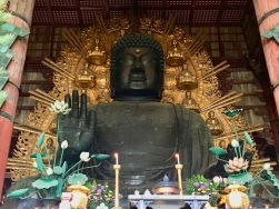 Nara, Great Buddha, Todai-ji, Japan, Terry Donohue