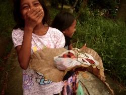 Spices, spice trade, nutmeg, Banda, Banda Islands, Bandas, Pulau Hatta, Terry Donohue, Indonesia