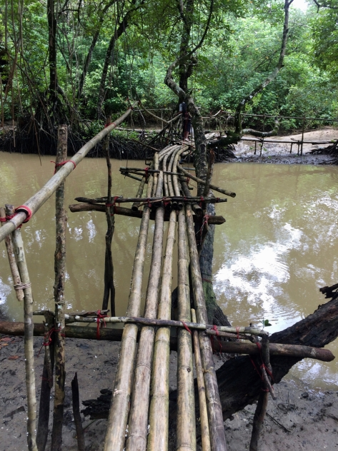 Ujung Kulon, National Park, Taman Nasional, trekking, Indonesia, bamboo bridge