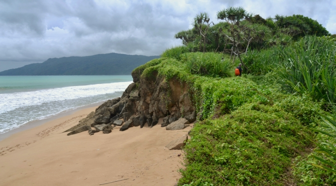 Ujung Kulon: A Wet Season Romp to Java's Wild Coast