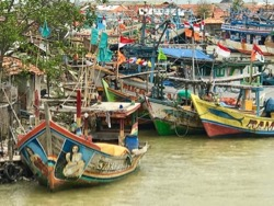 fishing boats, indonesian fishing boats, Java, Terry Donohue