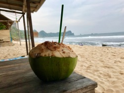 Java, Indonesia, Terry Donohue, south Java, beach, green coconut